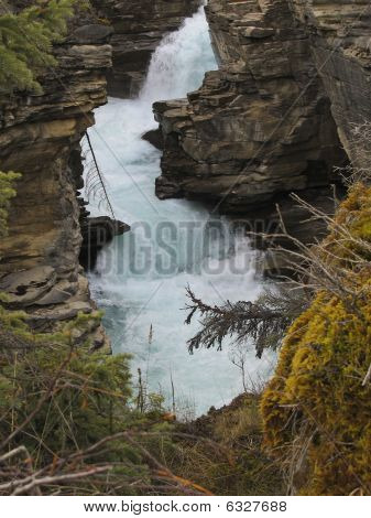 Athabasca River im Jasper Nationalpark