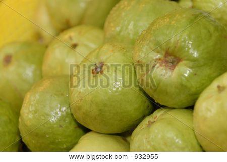 Guava4027