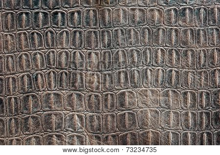 Turtle Carapace Pattern