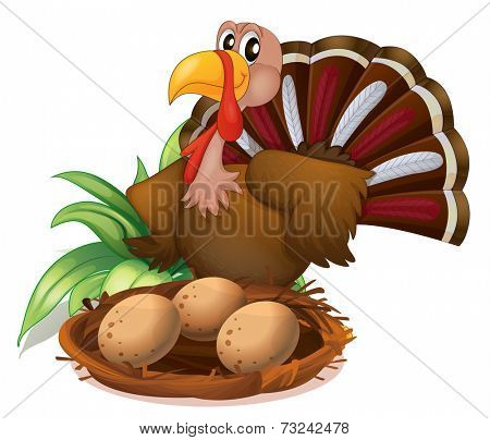 Illustration of a turkey beside the nest with eggs on a white background