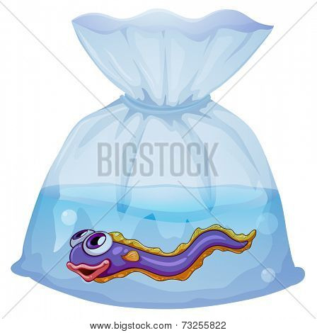 Illustration of an eel fish inside the plastic on a white background