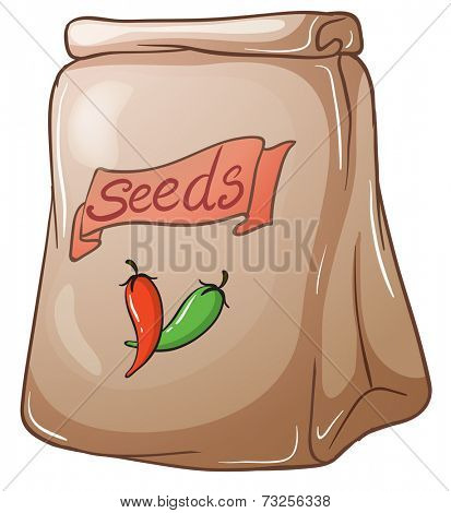 Illustration of a pack of chili seeds on a white background