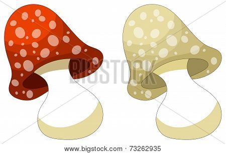 Cute Cartoon Mushroom - Isolated On White