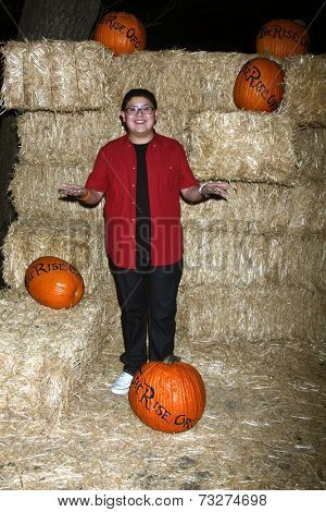 LOS ANGELES - OCT 4:  Rico Rodriguez at the RISE of the Jack O'Lanterns at Descanso Gardens on October 4, 2014 in La Canada Flintridge, CA