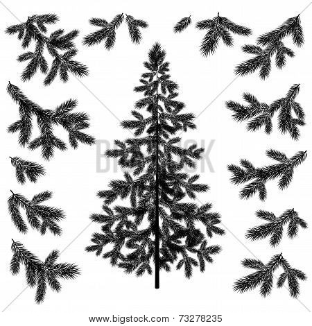 Christmas tree and branches silhouettes