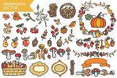 Cute and bright autumn Harvest element. Fruits,mushrooms,branches,wood,decor elements. Funny forest set for design template.Easy to make brushes!Vector poster
