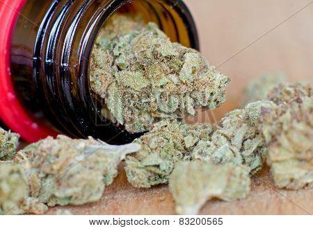 Close up photo of dry medical marijuana buds poster