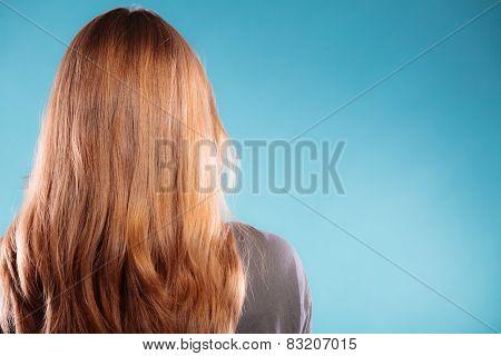 Female Brown Long Healthy Loose Hair Rear View