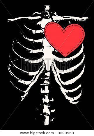 red heart on bone