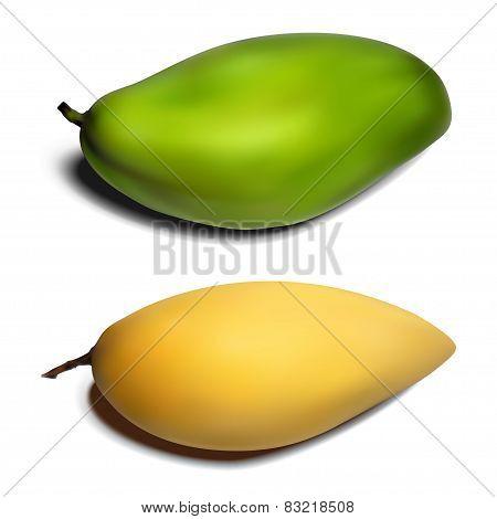 Mango set - yellow and green gradient mesh
