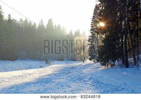 sunrays over fog on river in winter forest