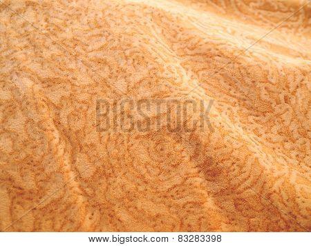 Velvet Fabric Texture