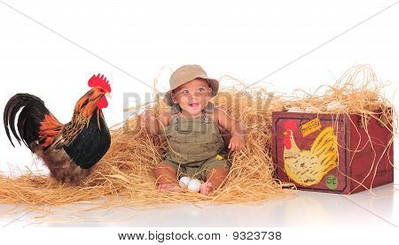 Happy Among The Chickens