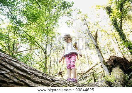 Determined Little Girl Scout Standing On A Log In The Woods