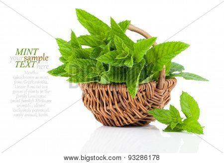 Mint in a basket