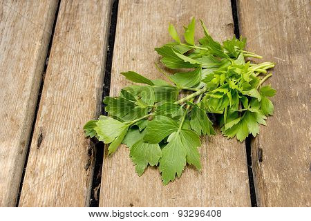 Sprigs Of Lovage On A Wooden Table