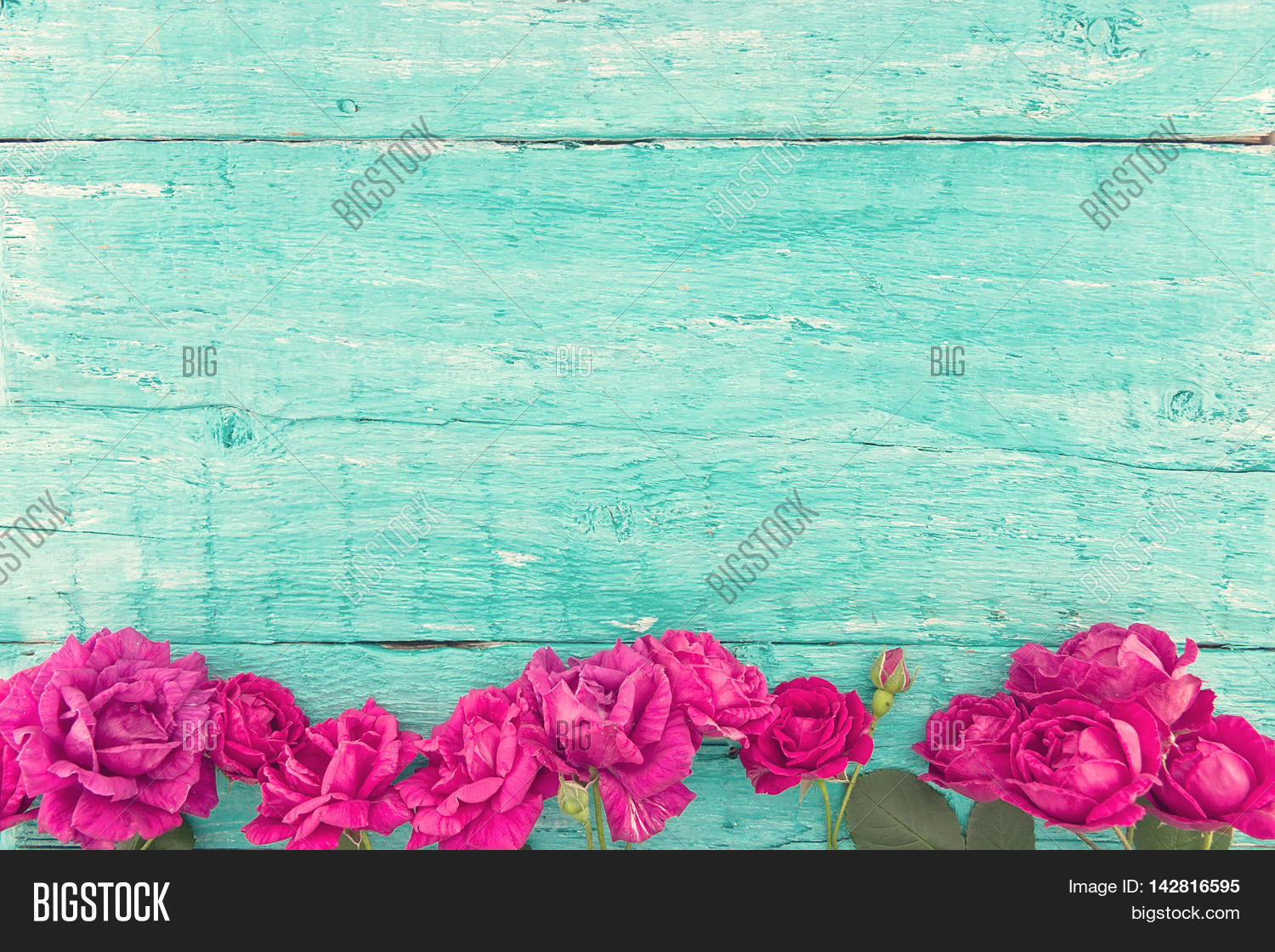 Frame Roses On Turquoise Rustic Image & Photo | Bigstock