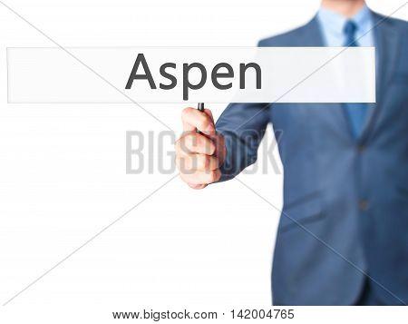 Aspen - Business Man Showing Sign