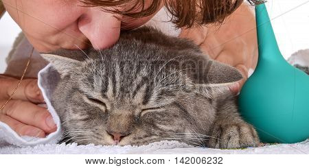 sick cat on a table with medicines