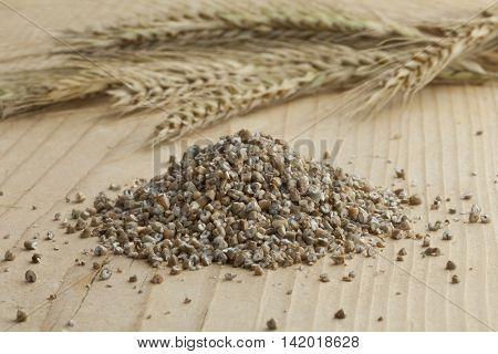 Fresh broken rye seeds and rye ears
