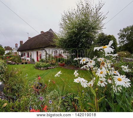 Traditional thatched cottage with a beautiful garden in Adare Ireland