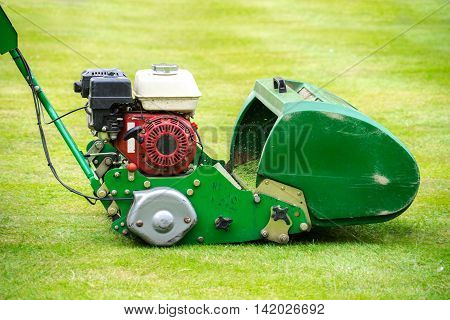 Old green motor mower cutting lawn in summer