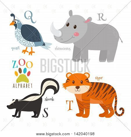 Zoo Alphabet With Funny Cartoon Animals. Q, R, S, T Letters. Quail, Rhinoceros, Skunk, Tiger