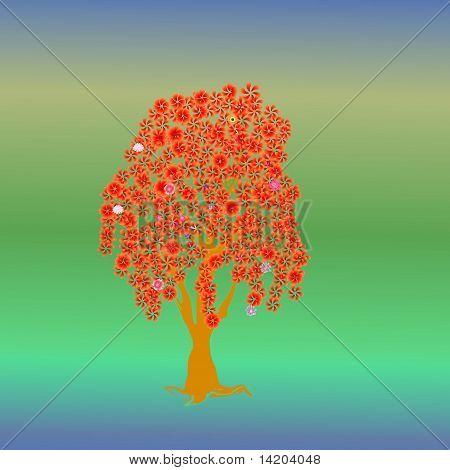Beautiful tree of multi colors