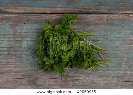 Green fresh parsley on a wooden table stock picture