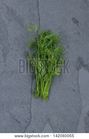 Dill on grey cutting board stock picture