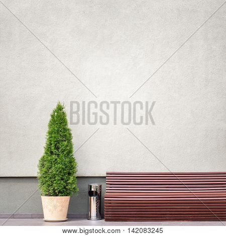 brown bench, metal trash bin and thuja tree in a pot near the wall