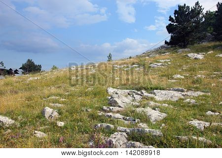 beautiful picturesque mountain plateau with wild meadow and blue sky in Crimean mountains in summer season