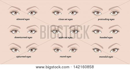 Various types of  woman eyes. Set of vector eyes shapes. Set of illustrations with captions.