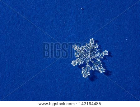 microscopic shot of natural brilliant snow flakes