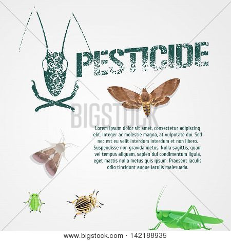 Set of realistic pest insects and template bodycopy vector illustration. Design element article icons of agriculture and garden pest bugs fly colorado beetle locust moths. Pesticide stamp sign