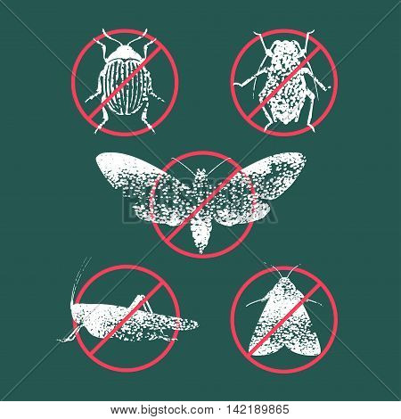 Set of pest insects in prohibition sign vector illustration. Icons symbols with agriculture farming gardening flies bugs beetles. Design element for pest insects control