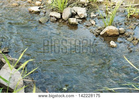 Stones in a babbling brook in the wild