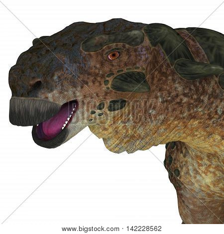 Pinacosaurus Dinosaur Head 3D Illustration - Pinacosaurus was a herbivorous ankylosaur that lived in the Cretaceous Period of Mongolia and China.