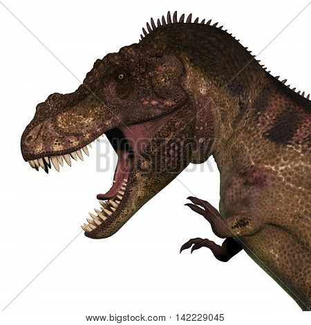 T-Rex Dinosaur Head 3D Illustration - Tyrannosaurus Rex was a carnivorous dinosaur that lived in the Cretaceous Period of North America.