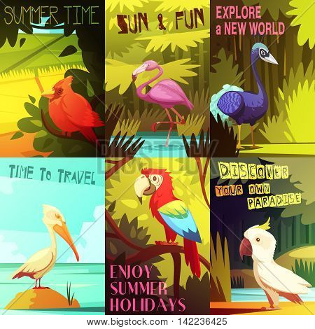 Exotic colorful birds 6 posters composition with cockatoo parrot  pelican and flamingo on beach resort vector illustration