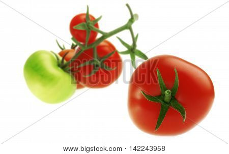 Tomato and Branch of Tomatoes. Isolated from a white background.