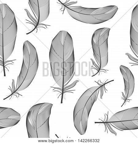 Bird Feather Hand Drawn Seamless Pattern Background Vector Illustration. EPS10