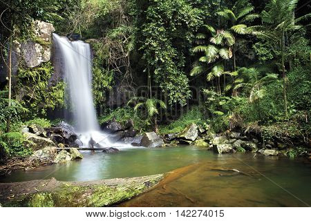 Curtis Falls, Mount Tamborine, Gold Coast, Queensland