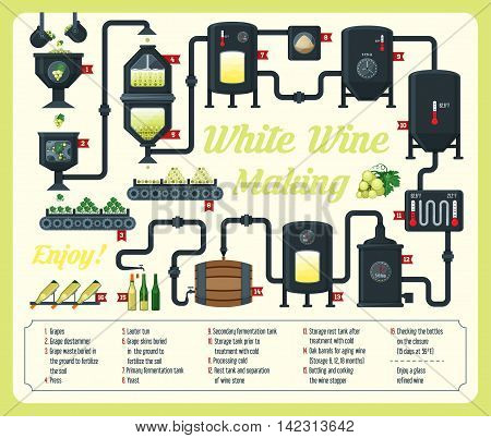 Wine making. how wine is made wine elements infographic