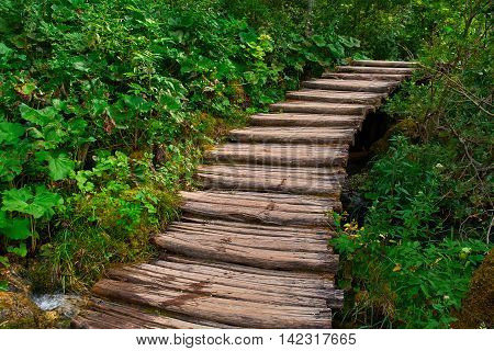 Wooden Stairs Road Trail in Plitvice National Park Croatia