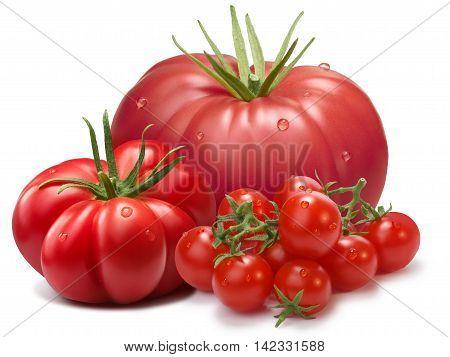 Heirloom Ribbed Tomatoes, Three Cultivars, Paths