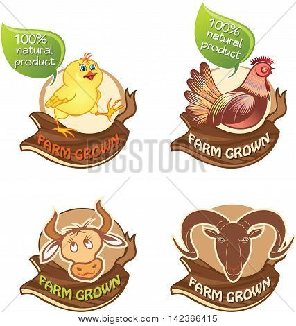 Set of farm banners with illustrations of  domestic animas