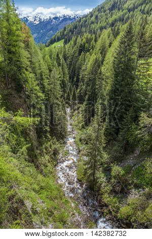 Mountain Stream In A Deep Gorge