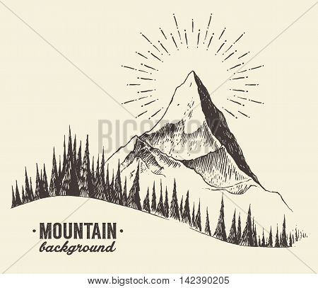 Sketch of a mountains with fir forest, sunrise sunset in the mountains, engraving style, hand drawn vector illustration