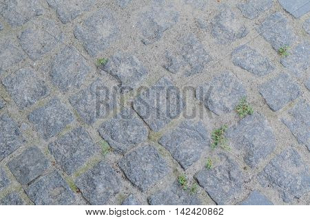 Geometry pattern background of cobblestone pavement with moss growing between the stones